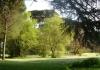 15-villa_ada_savoia_large