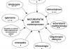 erboristeria-la-mimosa-campi-specializzazione_0