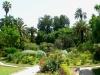 botanico3